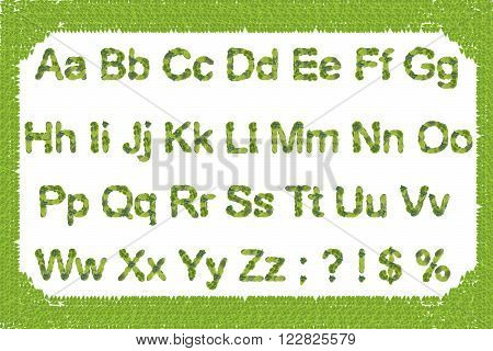 English alphabet with uppercase and lowercase letters, punctuation marks supplemented. Symbols of natural green leaf isolated on a white background. Photo collage.