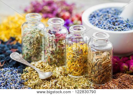 Bottles Of Healing Herbs And Mortar With Dry Lavender Flowers, Herbal Medicine.