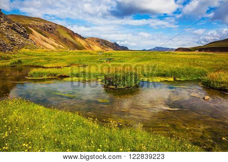 The picturesque valley in the National Park Landmannalaugar. Green grass among hot springs