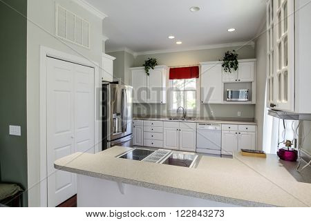 Modern open concept kitchen with white cabinets