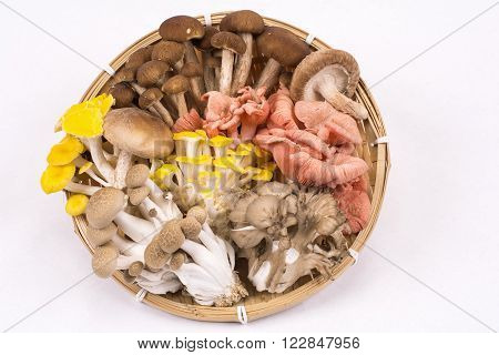Assorted mushrooms on a bamboo sieve over pale gray