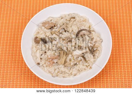 Various mushrooms and meat risotto on white plate