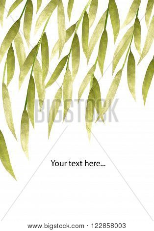 Silver and green hand-painted willow leaves on white background with place for your text