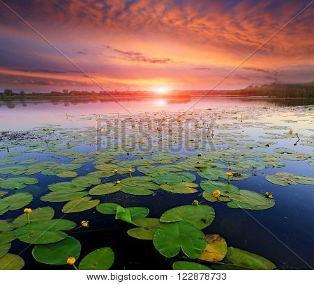 majestic sunset over lake surface