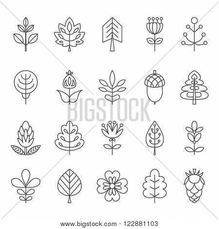 Set of outline stroke icons with tress leaves and flowers. Vector illustration for your cute design. It can be used as - logo pictogram icon infographic element.