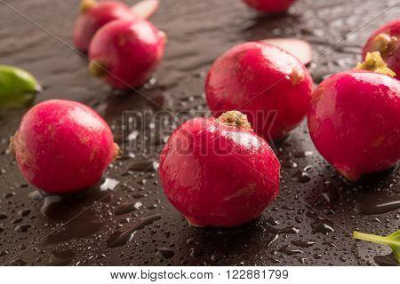 fresh radish with basil leaf in a wet background