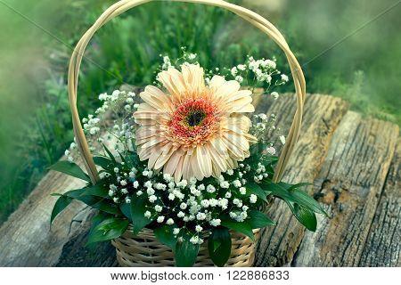 Gerber flower in wicker basket on rustic table