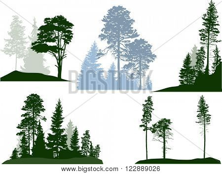 illustration with trees compositions set isolated on white background
