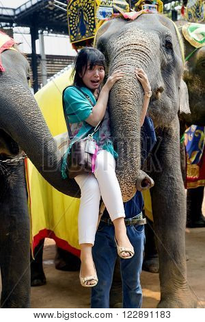 THAILAND, PATTAYA, MARCH, 28, 2015 - On the Elephants show frightened girl lift at elephant's trunk in Nong Nooch tropical garden in Pattaya, Thailand. The famous elephant show in Nong Nooch tropical garden in Pattaya, Thailand.
