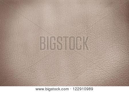 Sepia leather background . Retro style vignette