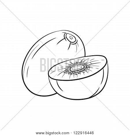 Kiwi. Vector hand drawn kiwi illustration isolated on white background - stock vector