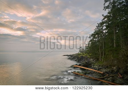 Salt Spring Island Shore, BC. The early morning, misty view from Ruckle Provincial Park on Saltspring Island. British Columbia, Canada. ** Note: Soft Focus at 100%, best at smaller sizes
