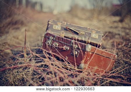 Two old vintage suitcases lie forgotten in a faded grass.