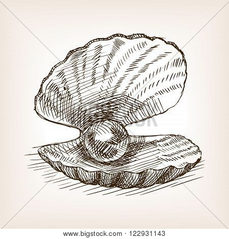 Seashell with pearl sketch style vector illustration. Old engraving imitation. Seashell with pearl hand drawn sketch imitation