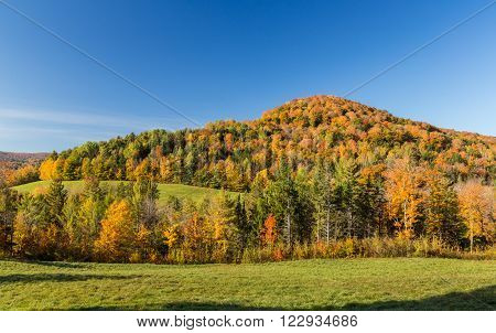 Beautiful Falls foliage mountain in Vermont countryside