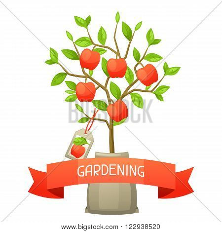 Seedling of apple tree with tag. Illustration for agricultural booklets, flyers garden.