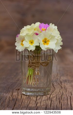 bouquet of pale yellow primroses in a glass glass of water on an old wooden board in the cracks