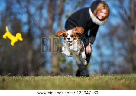 owner playing with her puppy outdoors in spring