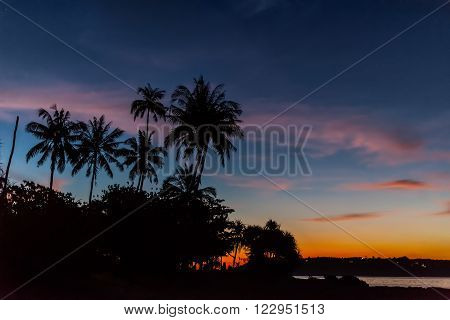 Beautiful sunset on the beach. Tropical paradise resort at the seaside. Silhouette of palmtrees on colorful background.