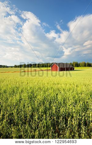 Red warehouse in Finland in the countryside. Summer rural landscape.