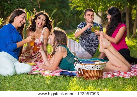 Small group of smiling friends near basket with wine bottle relaxing on a picnic blanket having drinks