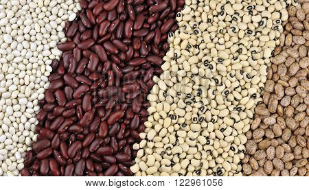 Dried beans, from left, Haricot or Navy beans, Red Kidney beans also known as Red Giant, Black Eyed beans also called Black Eyed peas and Pinto beans.