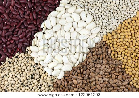 Dried beans, centre, Butter beans with clockwise from top left Red Kidney beans also called Red Giant , Haricot or Navy beans, Soya beans, Pinto beans and Black Eyed beans also called Black Eyed peas.