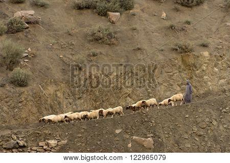 ATLAS MOUNTAINS, 23 OCTOBER 2015 - Shepherd on a mountain path in Atlas Mountains, Morocco, Africa