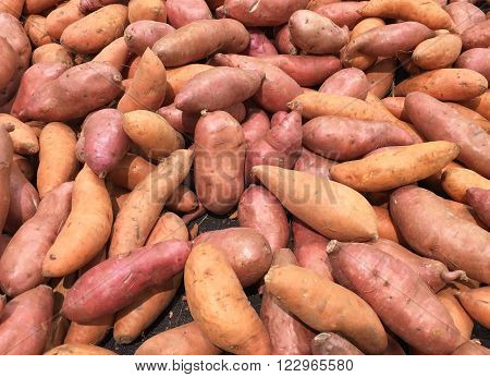 Several sweet potatoes produce makes a sweet potato background