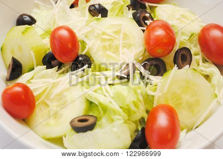 Fresh Vegetable Salad Served as an Appetizer
