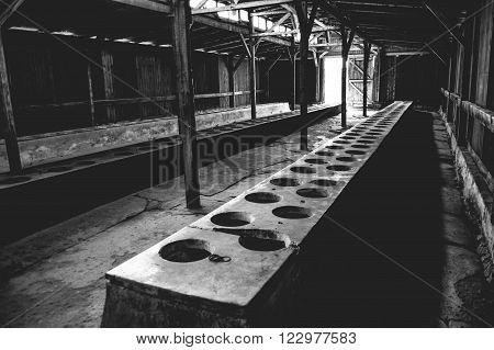 OSWIECIM, POLAND - JULY 3, 2009: Auschwitz II - Birkenau latrine barracks consisting of very primitive facilities