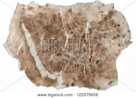 Piece of Wrinkled and Stained Antique Paper Isolated on White Background