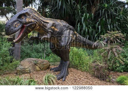 PERTH, WA / AUSTRALIA - MARCH 13: Roaring Nanotyrannus display model in Perth Zoo as part of Zoorassic exhibition in March 2016
