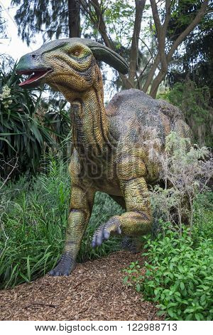 PERTH, WA / AUSTRALIA - MARCH 13: Hiding in a bush Parasaurolophus display model in Perth Zoo as part of Zoorassic exhibition in March 2016