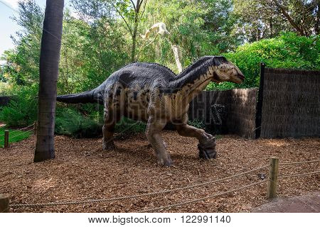 PERTH, WA / AUSTRALIA - MARCH 13: Standing Edmontosaurus display model in Perth Zoo as part of Zoorassic exhibition in March 2016