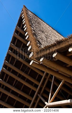 African Roof