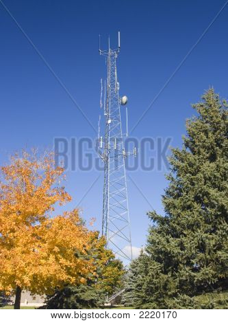 Autumn Cell Tower