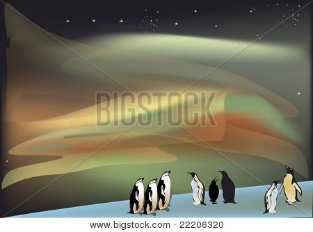 illustration with penguins under aurora