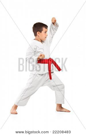 Full length portrait of a karate kid posing isolated against white background