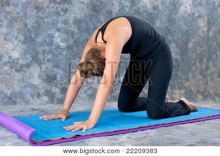 Woman Doing Yoga Posture Marjaryasana Or Cat Pose