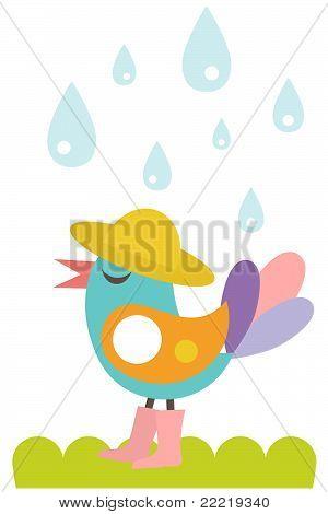 Cute bird in the rain