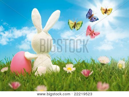 easter-bunny with coloured eggs sitting in a meadow and looks into the blue sky with butterflies