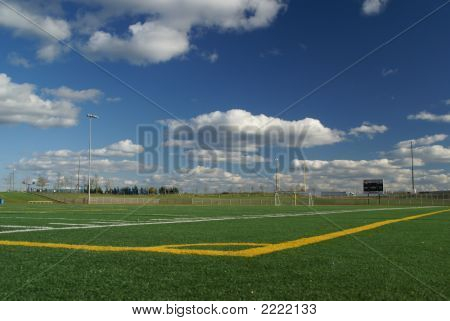 Colorful Field Of Sports
