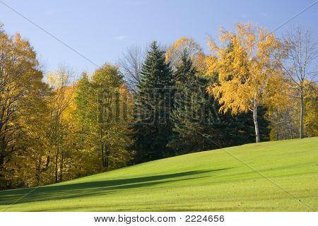 Outono Golf Fairway