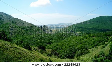 Mountains Covered With Wood