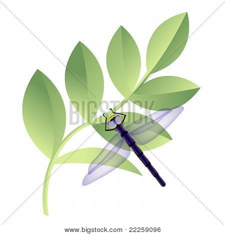 dragonfly with leaves