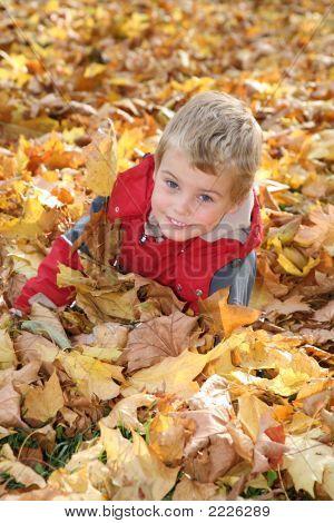 Child Among Fallen Leaves