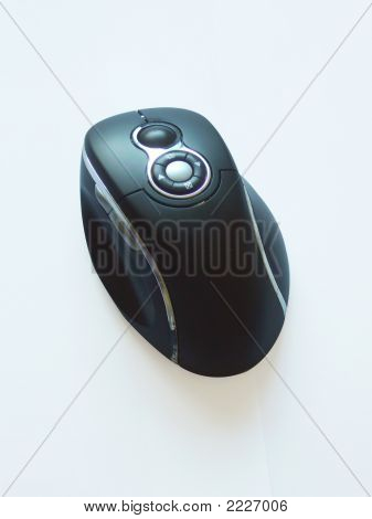 Mouse On White Background 300 Dpi