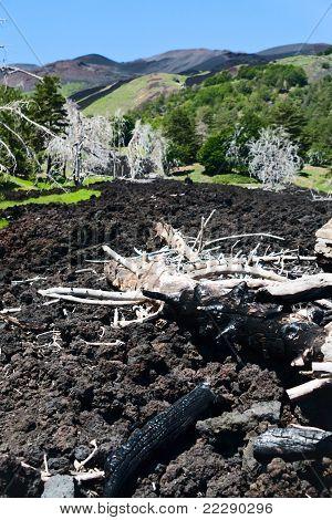 Black Lava Flow On Green Slope Of Etna