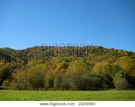 Fall Mountain